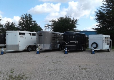 Livestock-Trailers-Homepage-new